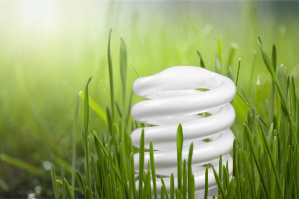 Energy Efficiency Tips to Save Energy & Money This Summer